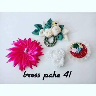 pahe-bross-41